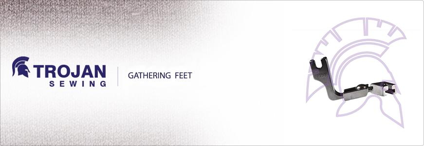 Gathering Feet